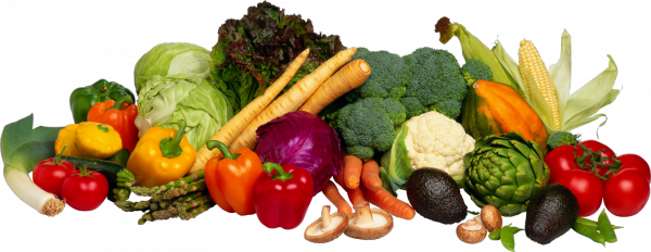 Store a variety of vegetables.
