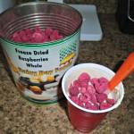 add freeze dried raspberries