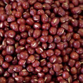 Adzuki Beans - Q054 - 1.5 lb. mylar bag