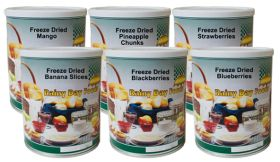 Rainy Day Foods freeze dried fruit pak