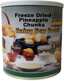 #10 can freeze dried pineapple  chunks 16 oz.