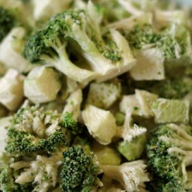Rainy Day Foods freeze dried broccoli