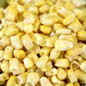Rainy Day Foods freeze dried corn