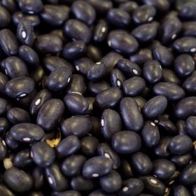Rainy Day Foods natural black turtle beans