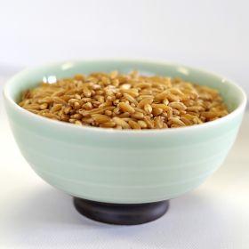 kamut brand khorasan wheat