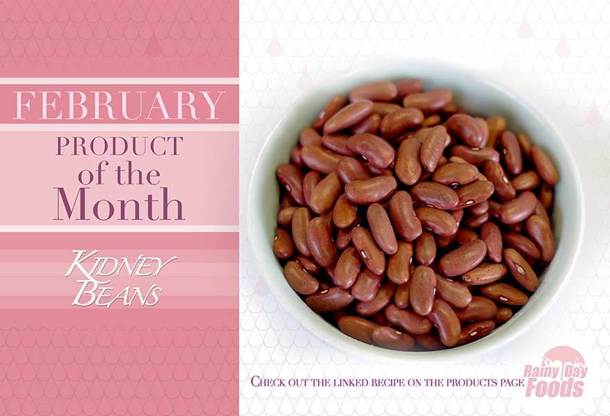 https://rainydayfoods.com/product-of-the-month.html